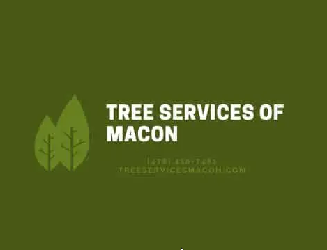 Tree Services of Macon